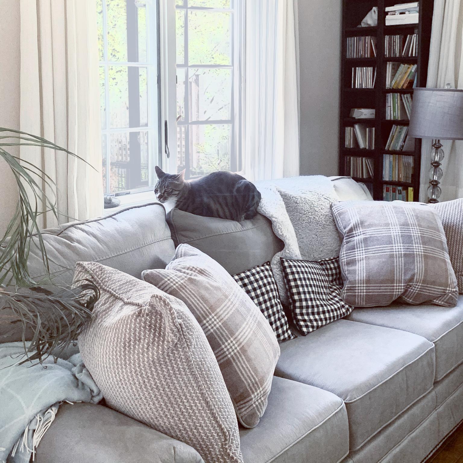 Ashley furniture/洋書/輸入住宅/海外インテリア/オーダーカーテン...などのインテリア実例 - 2021-04-22 11:35:05