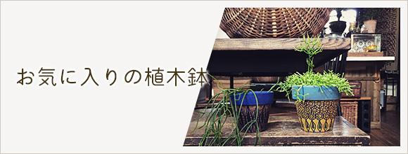 RoomClipのイベント お気に入りの植木鉢