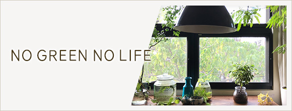 RoomClipのイベント NO GREEN NO LIFE