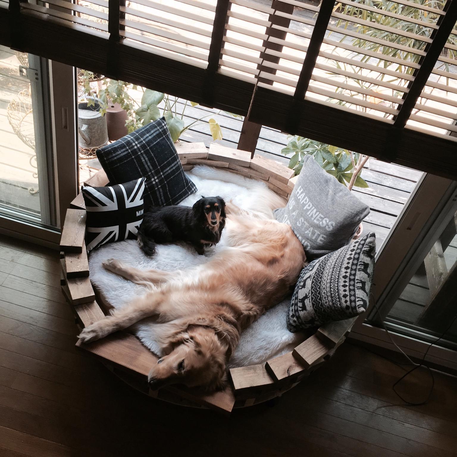 木をレンガ風に♡愛犬と一緒に使えるまぁるいソファーDIY by tomowithdogさん