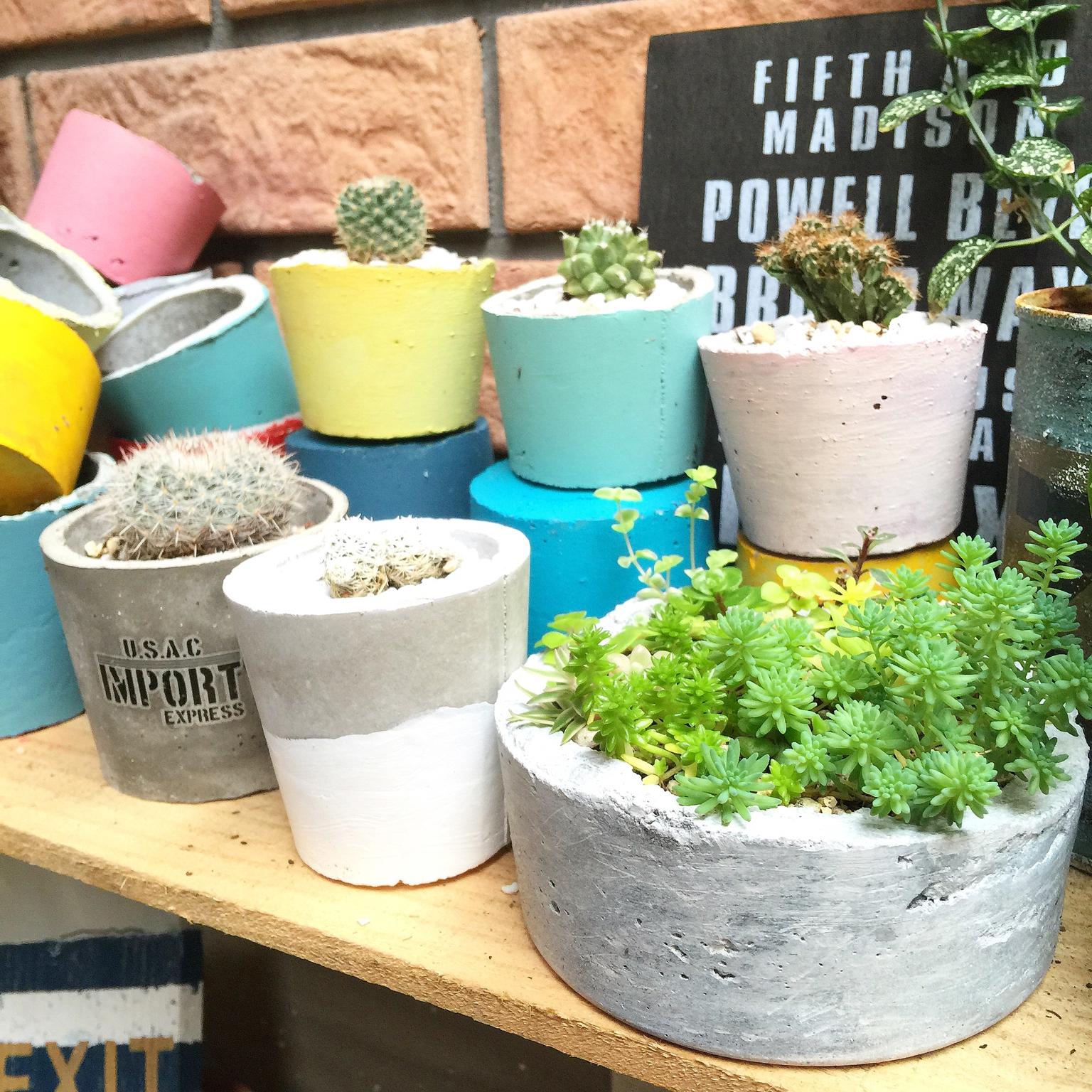 グリーンをもっと楽しむ!kiki_nekkoさんのDIYセメントミニ鉢