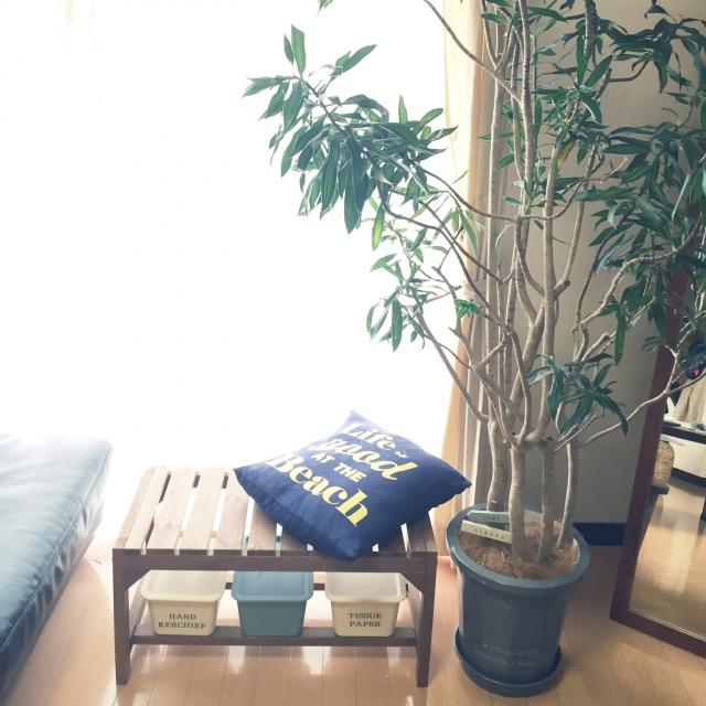 お庭以外でも大活躍♡室内で使うニトリのガーデンベンチ