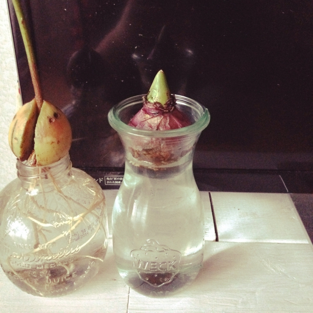 Akemiさんの花瓶