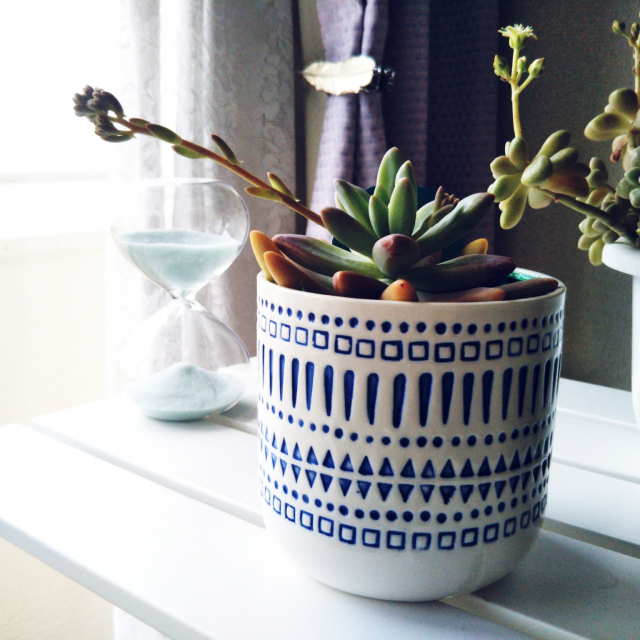 グリーンとの生活をもっと身近に☆ダイソーの植木鉢
