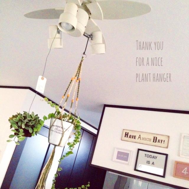 照明から吊るして下からの眺めもハッピーに