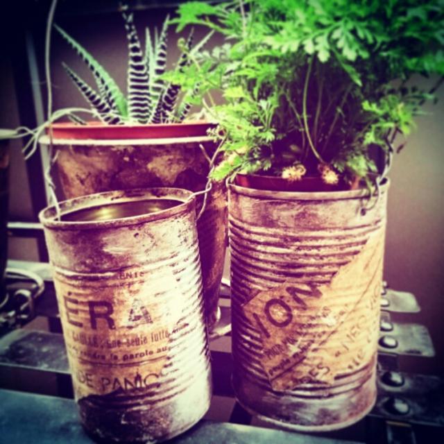 空き缶+サビ加工=観葉植物の鉢