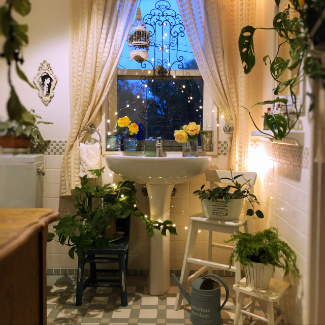 フレッシュに華やかさを演出♪トイレでの観葉植物の飾り方
