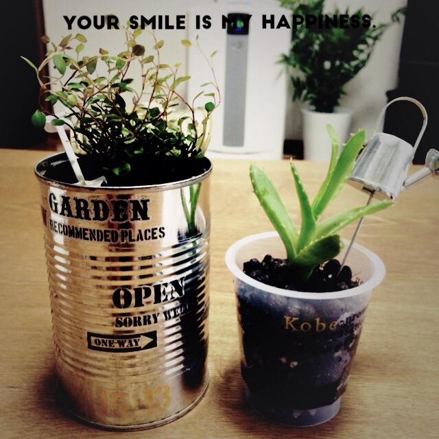 空き缶+転写シール=植物の鉢