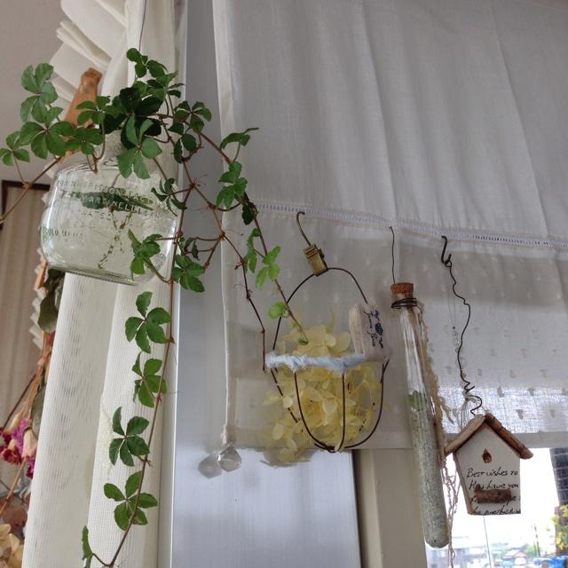 Marikaさんのカフェカーテン