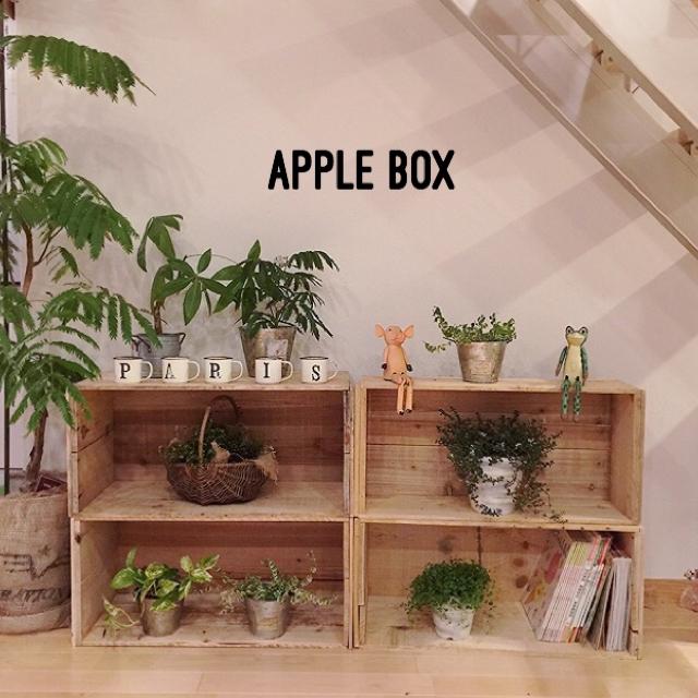 観葉植物を並べてホッとできる空間に