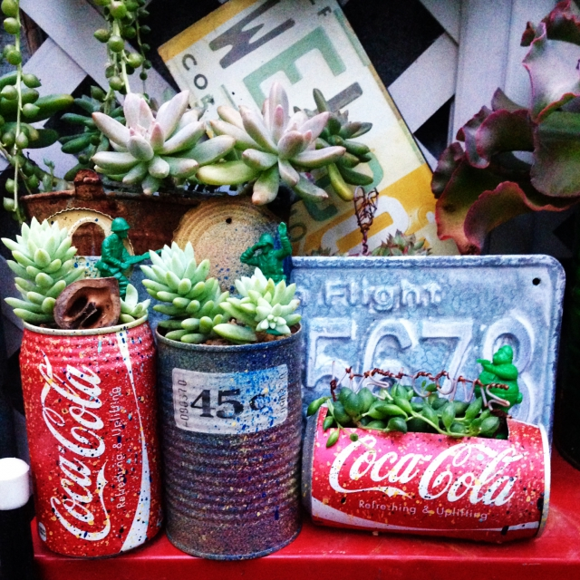 リメイクしたコーラ缶に植えて