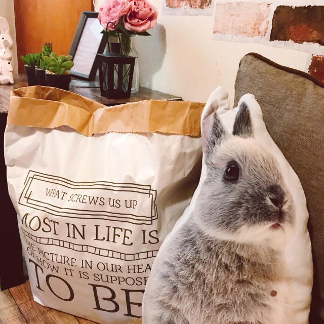 生活感ゼロの憧れ空間へ☆場所別ペーパーバッグの使い方