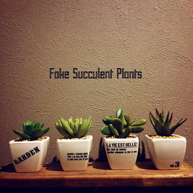 フェイクグリーンの鉢植えに