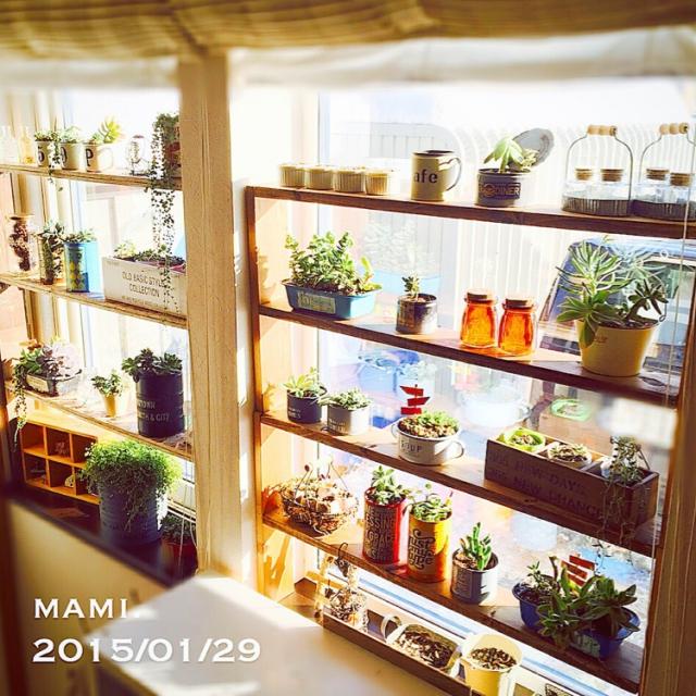 初心者におすすめ♪簡単にマネできる「植物の飾り方」10選