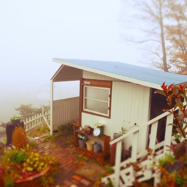 庭の木の跡に建てた念願の小屋
