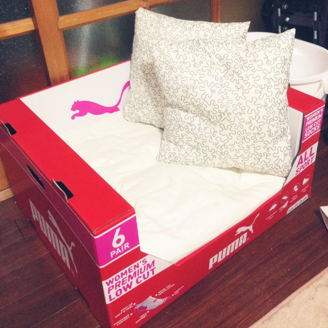 大きな箱で子ども用ソファ♪