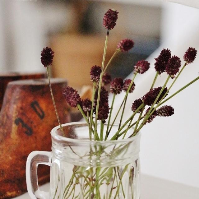 季節のお花をざっくりグラスに
