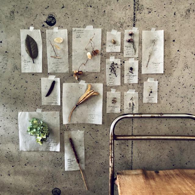 ノスタルジックなボタニカル!植物標本風オブジェの実例集