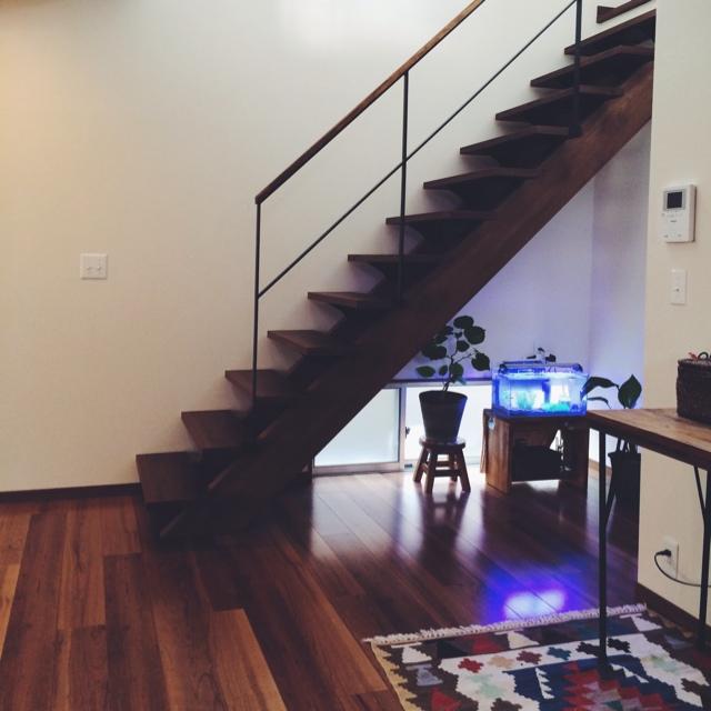 階段下に観葉植物と水槽をディスプレイ