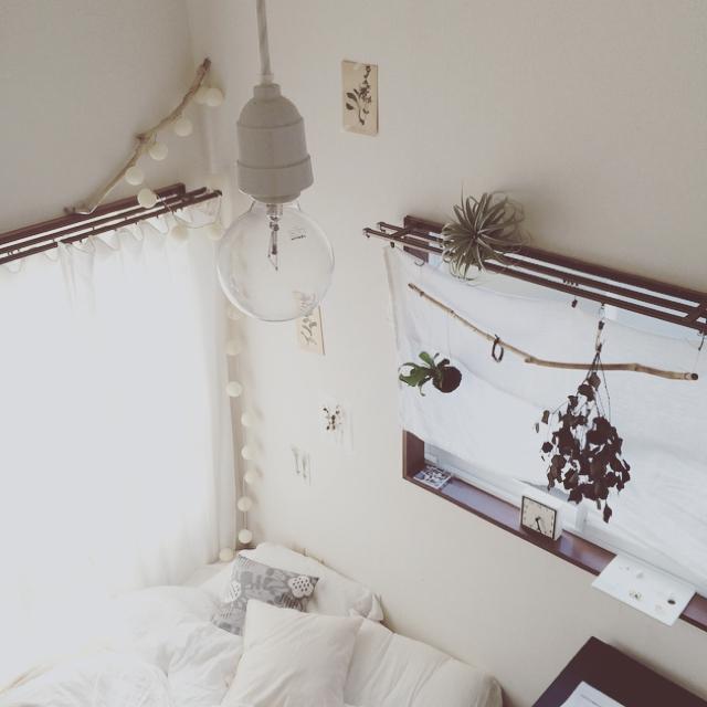流木は壁に飾る