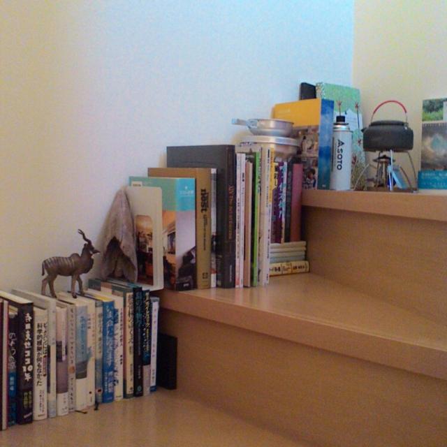 階段が本棚に変身