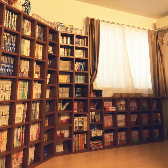 本棚をずらりと並べてマンガ喫茶のような部屋に