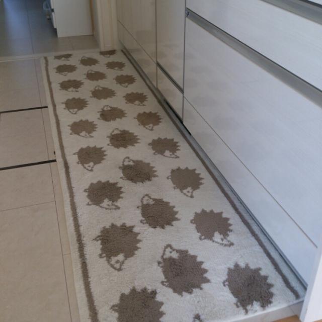 たくさんのハリネズミが足元でお散歩!
