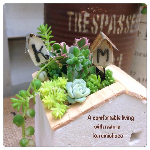 小さな空間でもたくさんの種類を飾れます。