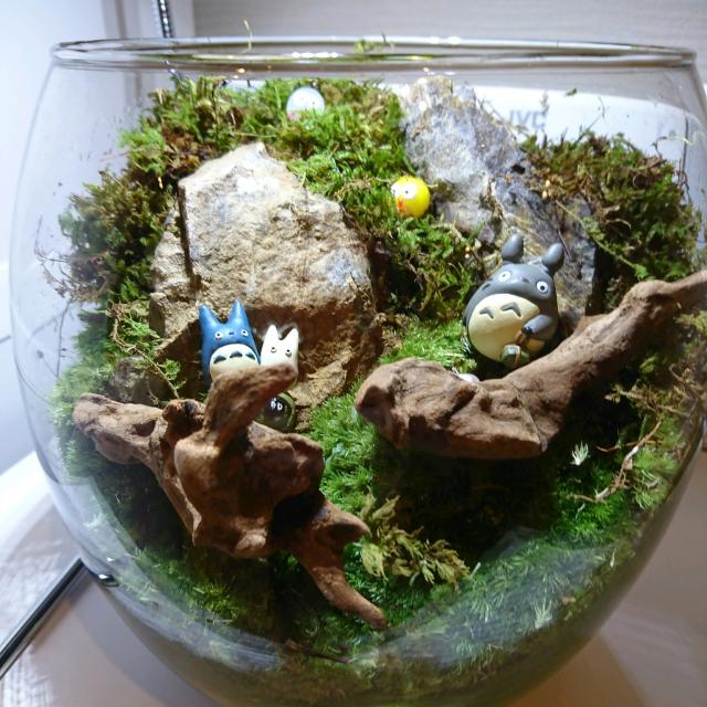 お部屋に森を♡癒しのテラリウムでインドアガーデニング