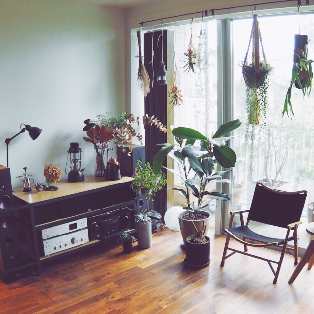 アウトドア用品と植物でリラックス
