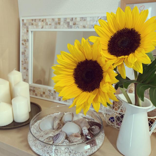 季節をたっぷり感じられる♡夏のお花や植物の取り入れ方