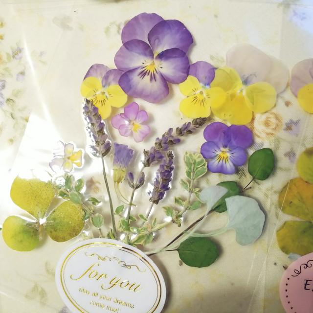 可憐に咲いた姿のままで♡手作り押し花アート作品集