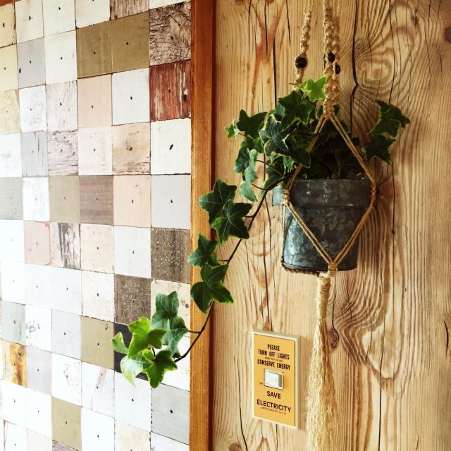 ブリキの鉢の植物をプラントハンガーで飾る