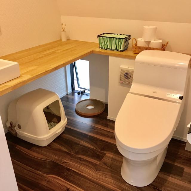 どこにどうやって置いてる?猫トイレの収納場所アイディア