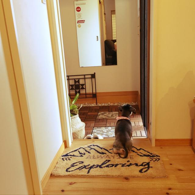 玄関を自慢の空間に♪おすすめしたいニトリの玄関マット