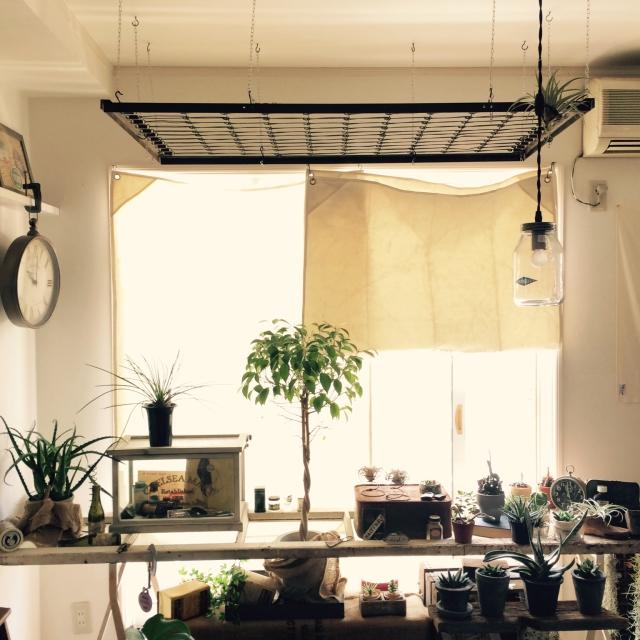 ② 植物ハンギング用ネットのリメイク