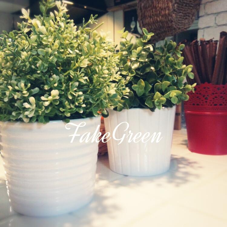 FEJKA/フェイカのコーディネート写真