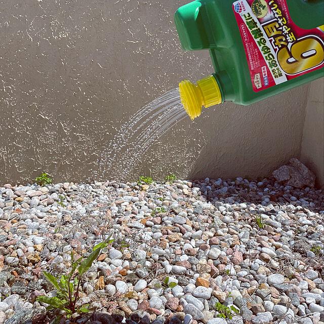 お庭でも駐車場でも!夏が来る前に、雑草のお悩みを除草剤で解決♪