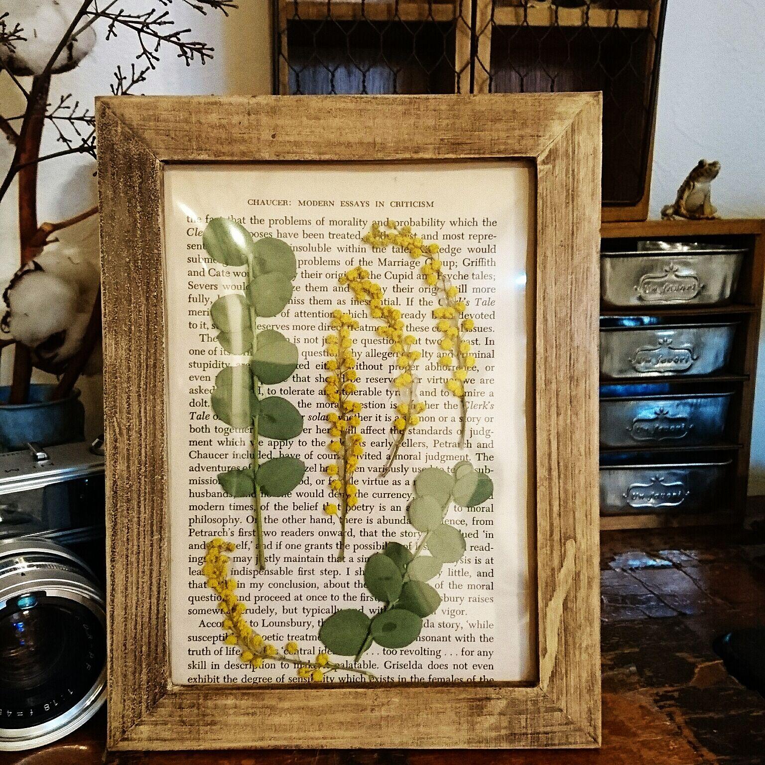 鮮やかな黄色が押し花にしても綺麗に浮かび上がります。英字新聞風のペーパーを台紙に、シャビーな雰囲気の額もおしゃれですね。
