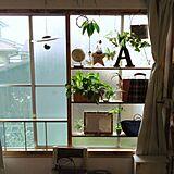 出窓の写真
