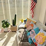 SALAさんのお部屋の写真