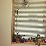 sionさんのお部屋の写真