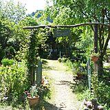 素敵庭の写真