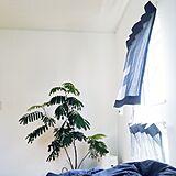 ベッドサイド イメージの写真