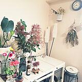junjunさんのお部屋の写真