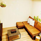 BO CONCEPT/ニトリ/unico/LOWYA/観葉植物...などのインテリア実例 - 2021-05-08 06:47:53