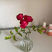 マザーズデイ/ばらの花/ガーデニングの花をカット/花瓶は空き瓶/リビングのインテリア実例 - 2021-05-08 12:29:11