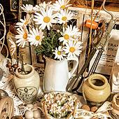 古道具/アンティーク のある暮らし/100均/インテリアを楽しむ/ダイソー...などのインテリア実例 - 2021-04-16 21:10:18
