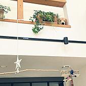 ゴールデンレトリバー/アイビー/カリフォルニアスタイルに憧れる/植物のある暮らし/観葉植物...などのインテリア実例 - 2021-07-14 07:40:38