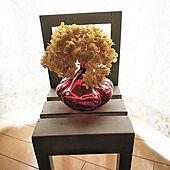 リビング/椅子/IKEA/アナベル/ガラス雑貨...などのインテリア実例 - 2020-10-17 08:41:28